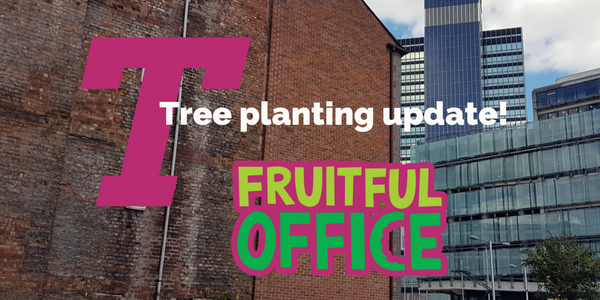 Tree planting with Fruitful Office